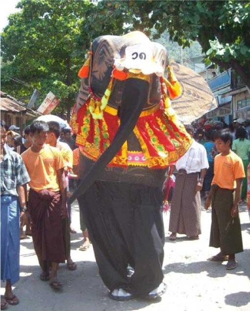 Elephant Dance Festival