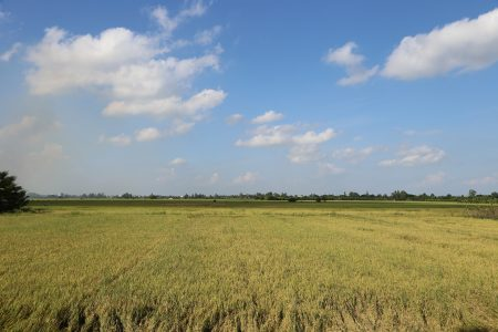 VIETNAM – Chau Doc – Cycling Tour in the Countryside