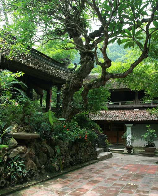 Thay Pagoda Festival