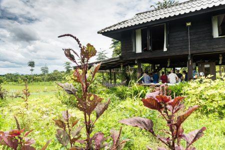 THAILAND – Chiang Mai – An Intimate Meal Experience at an Organic Farm