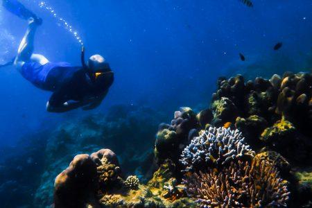 THAILAND – Khura Buri – Surin islands snorkeling and Moken village