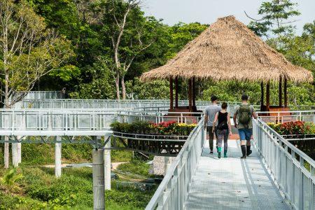 THAILAND – Phuket – Observe Gentle Giants at Phuket Elephant Sanctuary